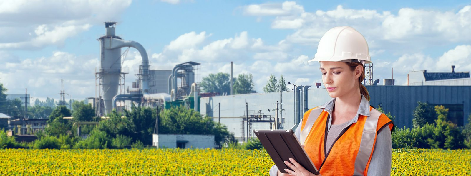 Mirsense, solutions for industries and gas analysis